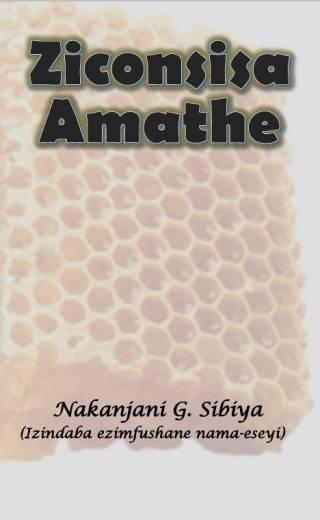 Ziconsisa Amathe